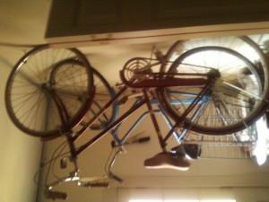 BikeJoanHiawatha